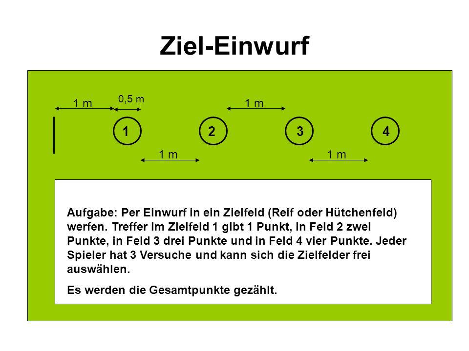 Ziel-Einwurf 0,5 m. 1 m. 1 m. 1. 2. 3. 4. 1 m. 1 m.