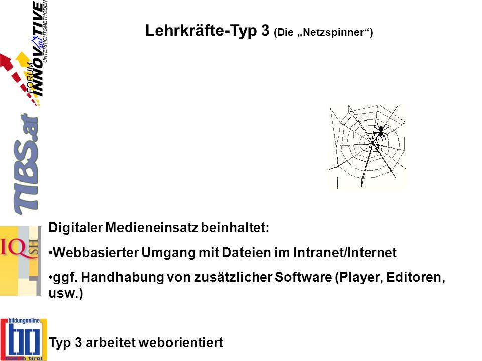 """Lehrkräfte-Typ 3 (Die """"Netzspinner )"""