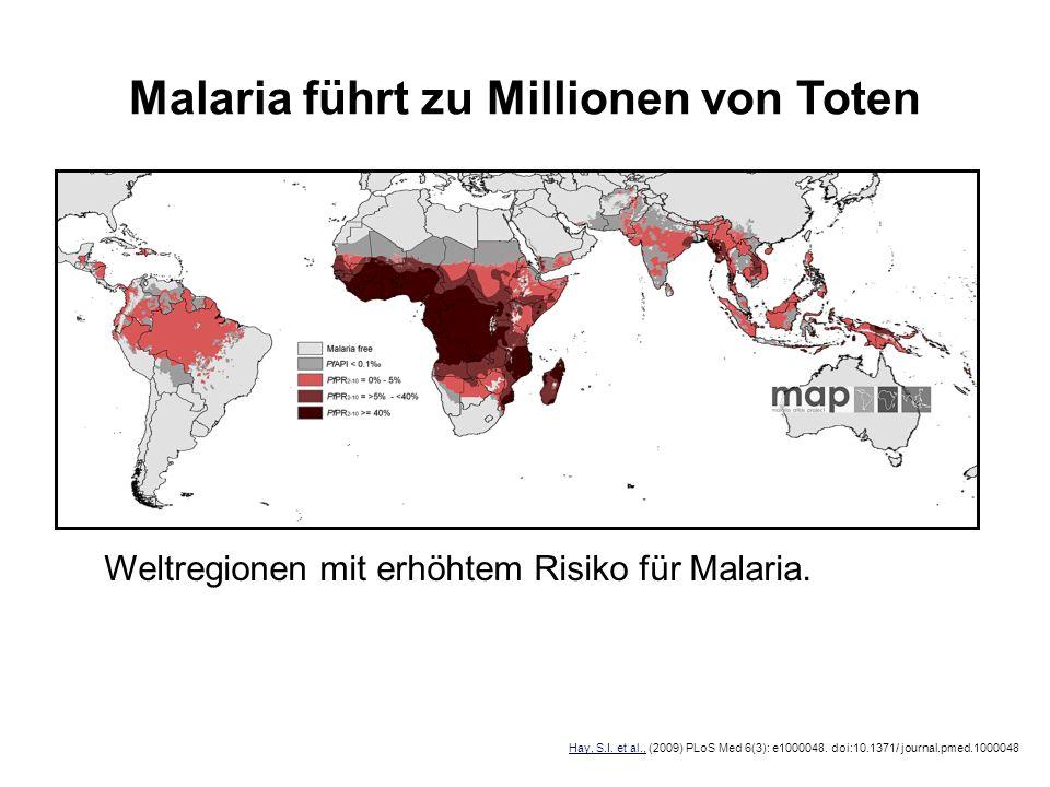 Malaria führt zu Millionen von Toten