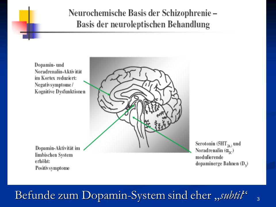 """Befunde zum Dopamin-System sind eher """"subtil"""