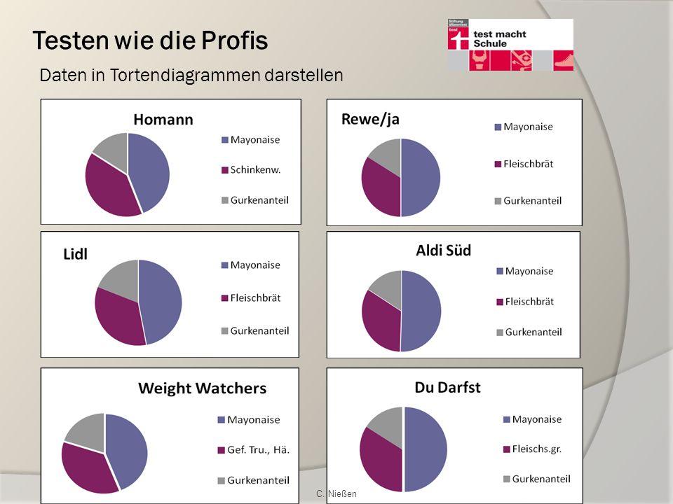 Testen wie die Profis Daten in Tortendiagrammen darstellen