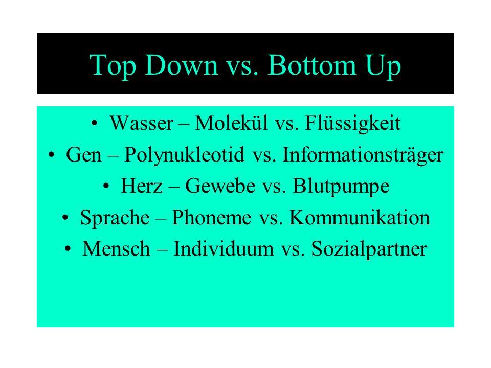 Top Down vs. Bottom Up Wasser – Molekül vs. Flüssigkeit