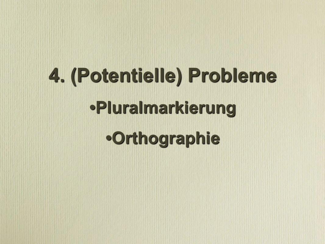 4. (Potentielle) Probleme