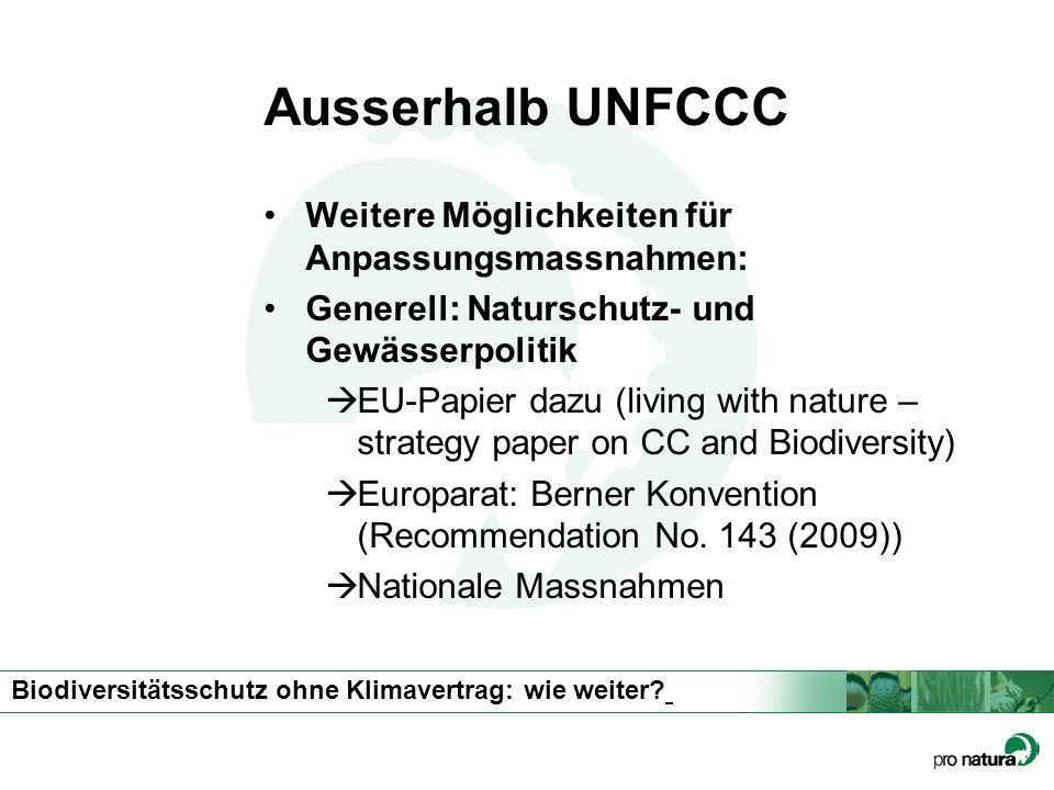 Ausserhalb UNFCCC Weitere Möglichkeiten für Anpassungsmassnahmen: