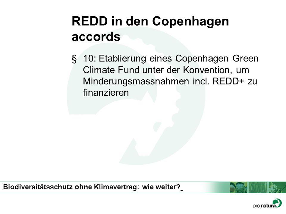 REDD in den Copenhagen accords