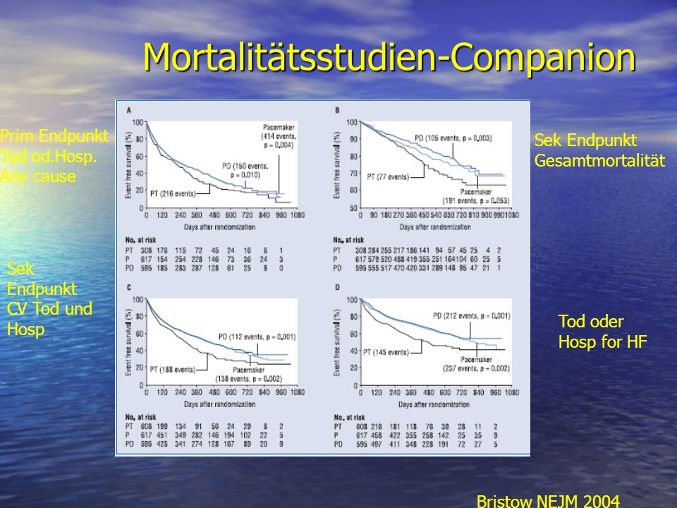 Mortalitätsstudien-Companion