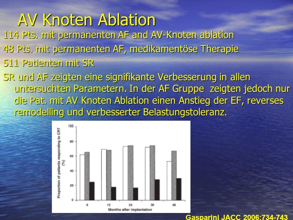 AV Knoten Ablation 114 Pts. mit permanenten AF and AV-Knoten ablation