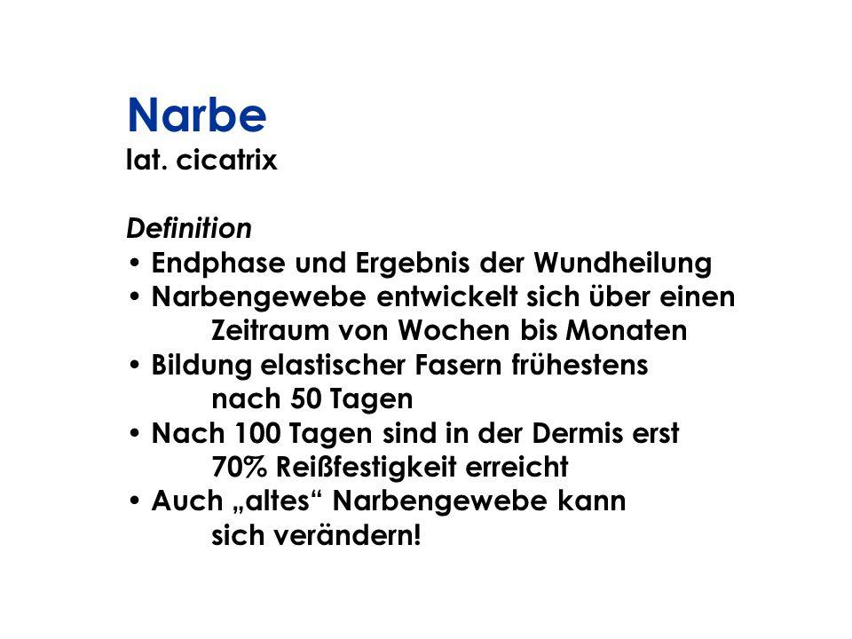 Narbe lat. cicatrix Definition Endphase und Ergebnis der Wundheilung