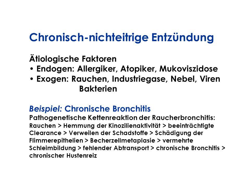 Chronisch-nichteitrige Entzündung