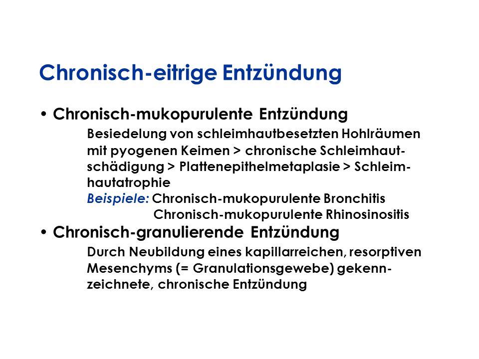 Chronisch-eitrige Entzündung