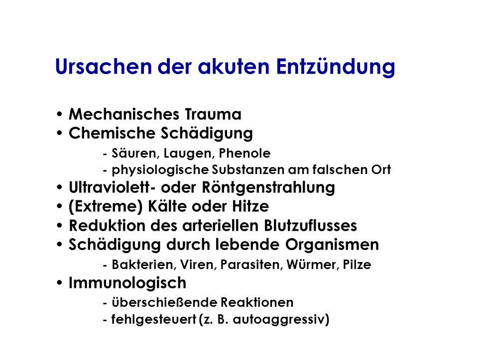 Ursachen der akuten Entzündung