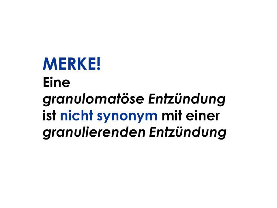MERKE! Eine granulomatöse Entzündung ist nicht synonym mit einer