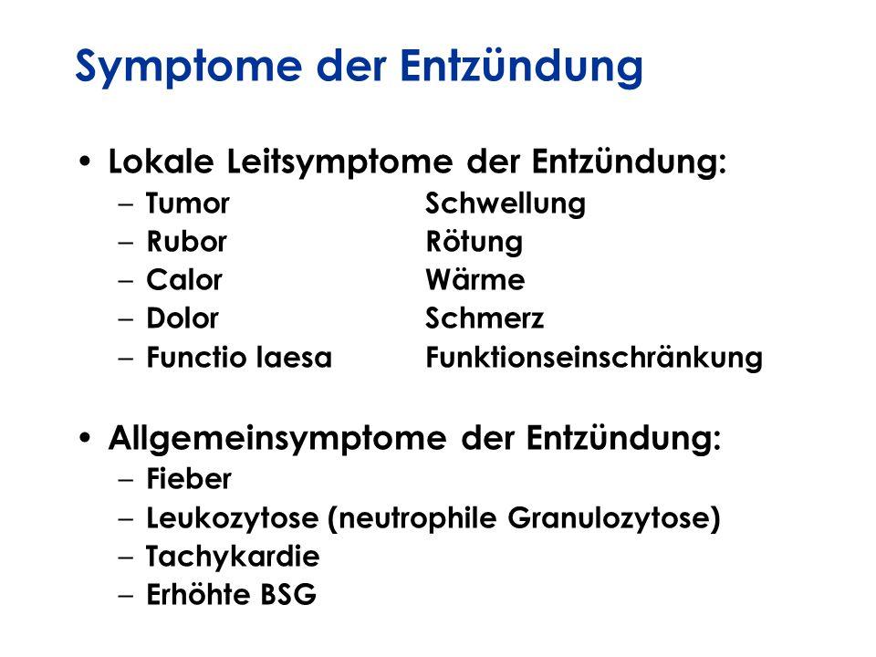 Symptome der Entzündung