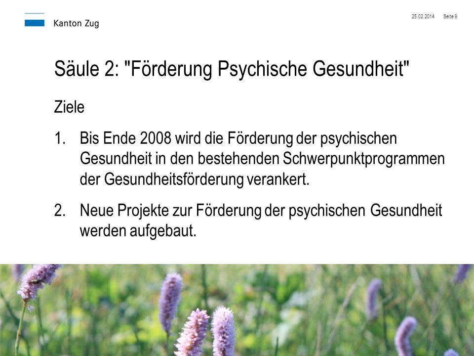Säule 2: Förderung Psychische Gesundheit
