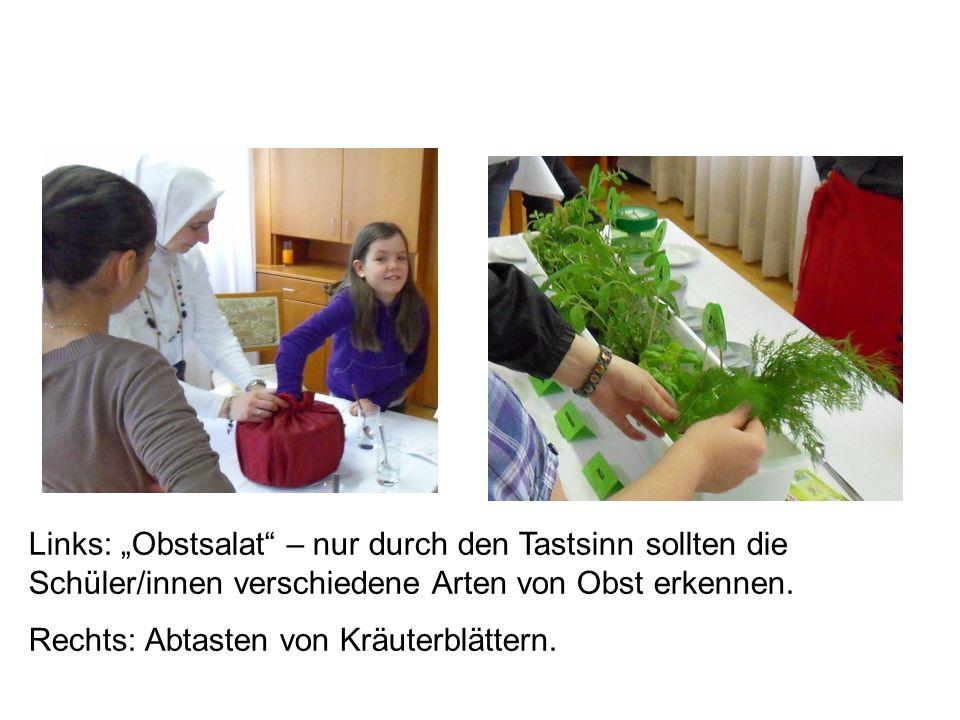 """Links: """"Obstsalat – nur durch den Tastsinn sollten die Schüler/innen verschiedene Arten von Obst erkennen."""