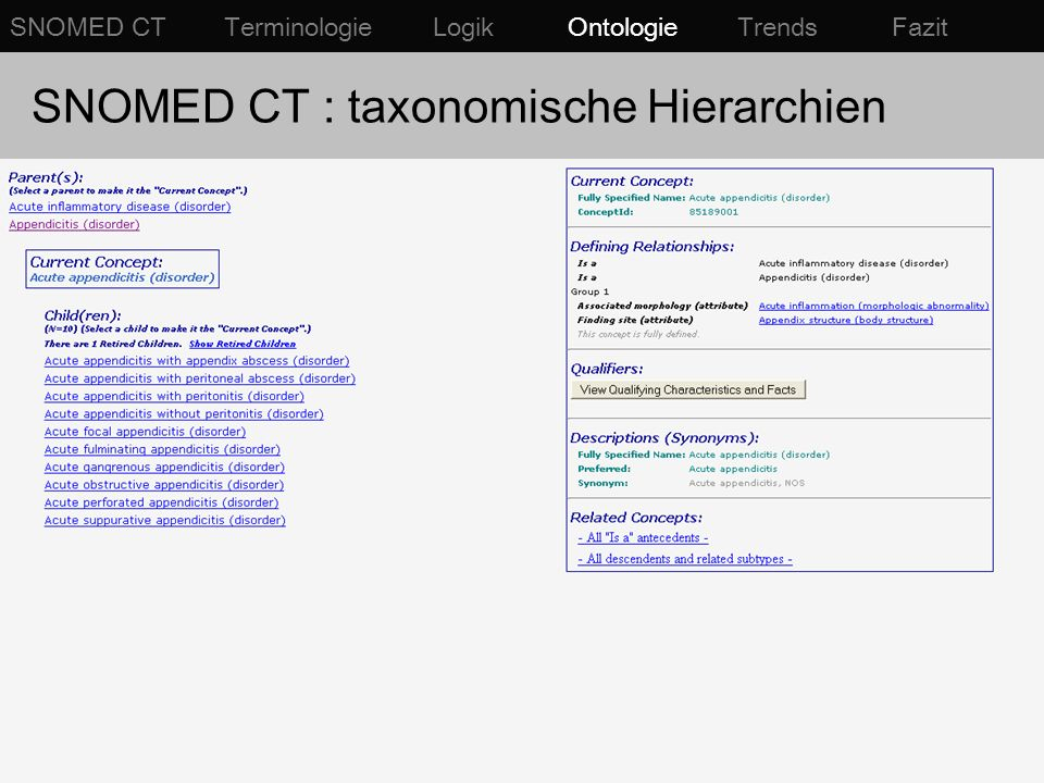 SNOMED CT : taxonomische Hierarchien