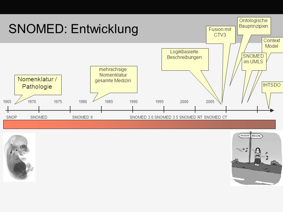 SNOMED: Entwicklung Nomenklatur / Pathologie Ontologische