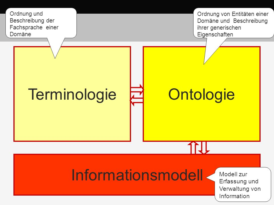 Terminologie Ontologie Informationsmodell Ideal