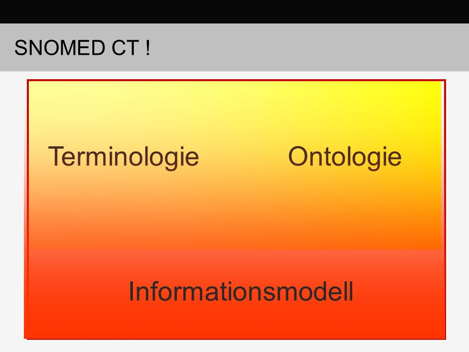 SNOMED CT ! Terminologie Ontologie Informationsmodell