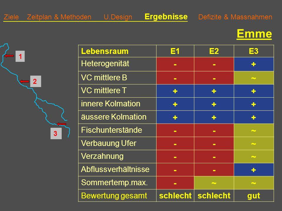 Emme - + ~ Lebensraum E1 E2 E3 Heterogenität VC mittlere B