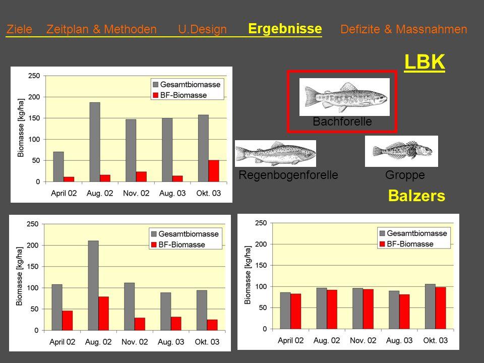 Ziele Zeitplan & Methoden U.Design Ergebnisse Defizite & Massnahmen