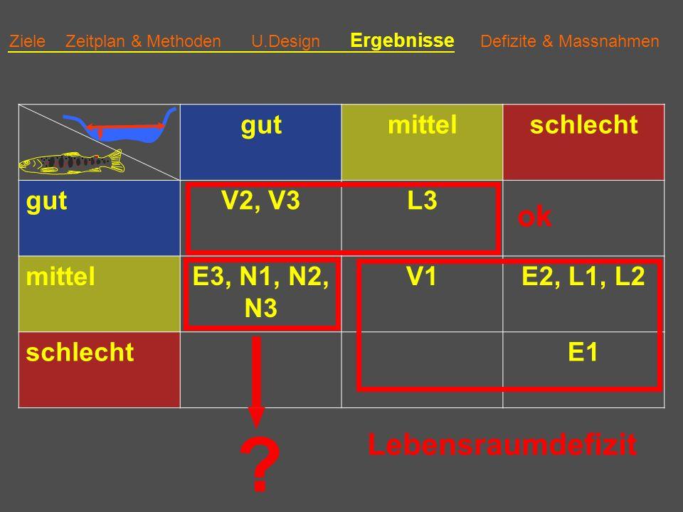 ok Lebensraumdefizit gut mittel schlecht V2, V3 L3 E3, N1, N2, N3 V1