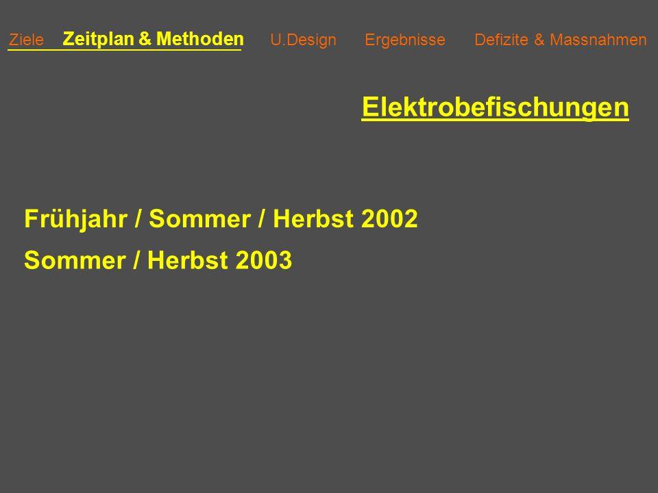 Elektrobefischungen Frühjahr / Sommer / Herbst 2002