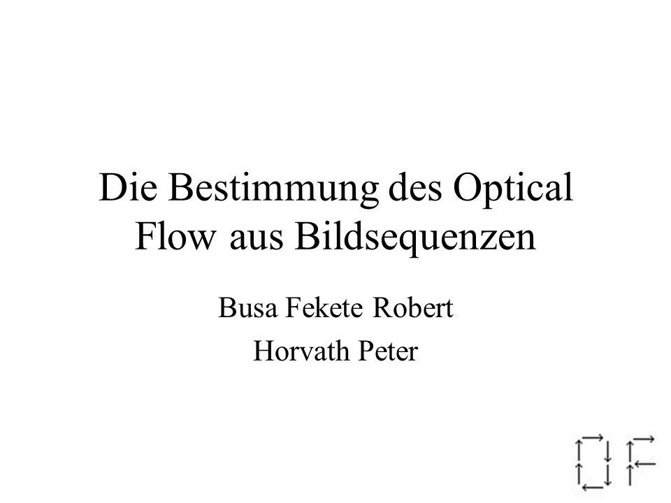 Die Bestimmung des Optical Flow aus Bildsequenzen