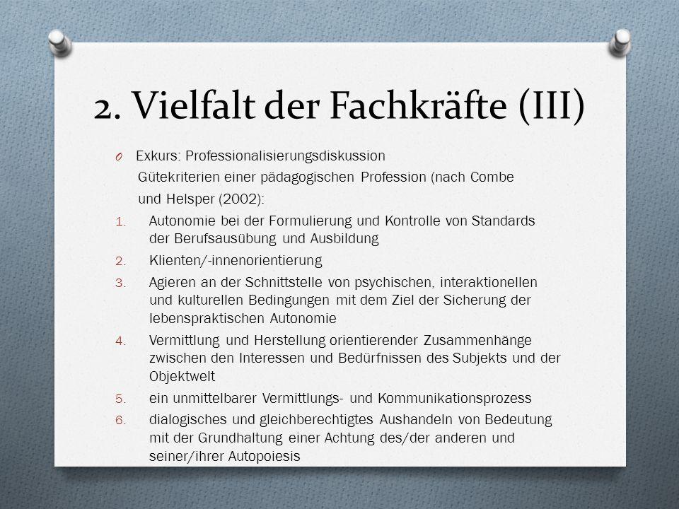 2. Vielfalt der Fachkräfte (III)