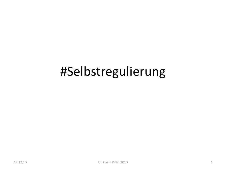 #Selbstregulierung 19.12.13 Dr. Carlo Piltz, 2013