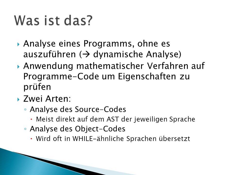 Was ist das Analyse eines Programms, ohne es auszuführen ( dynamische Analyse)