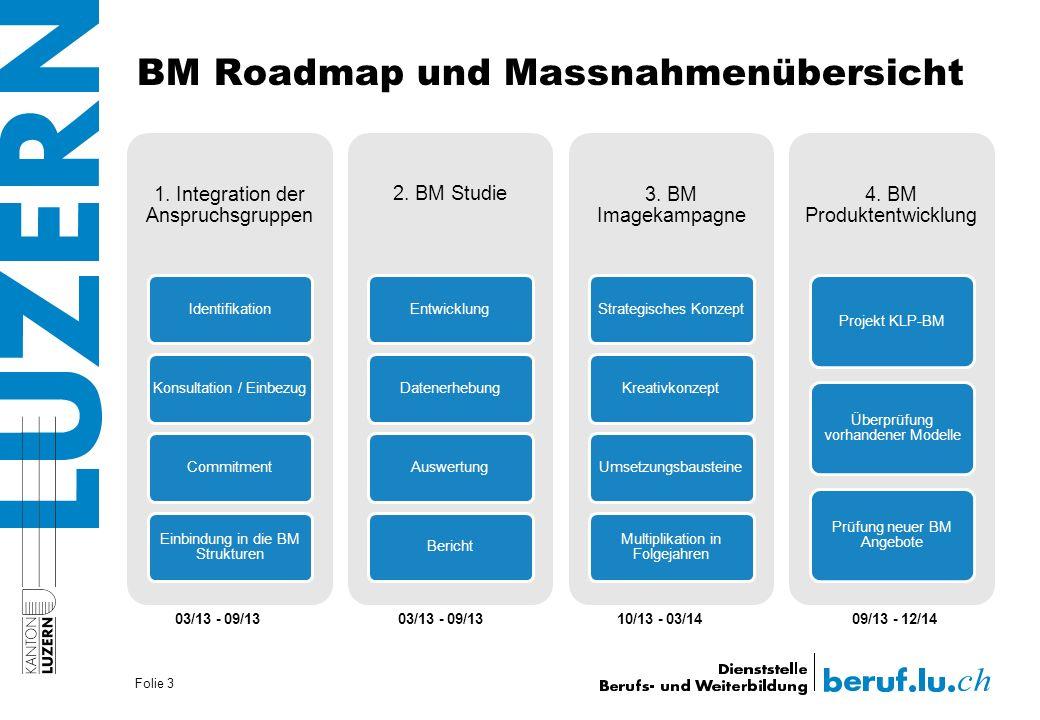 BM Roadmap und Massnahmenübersicht