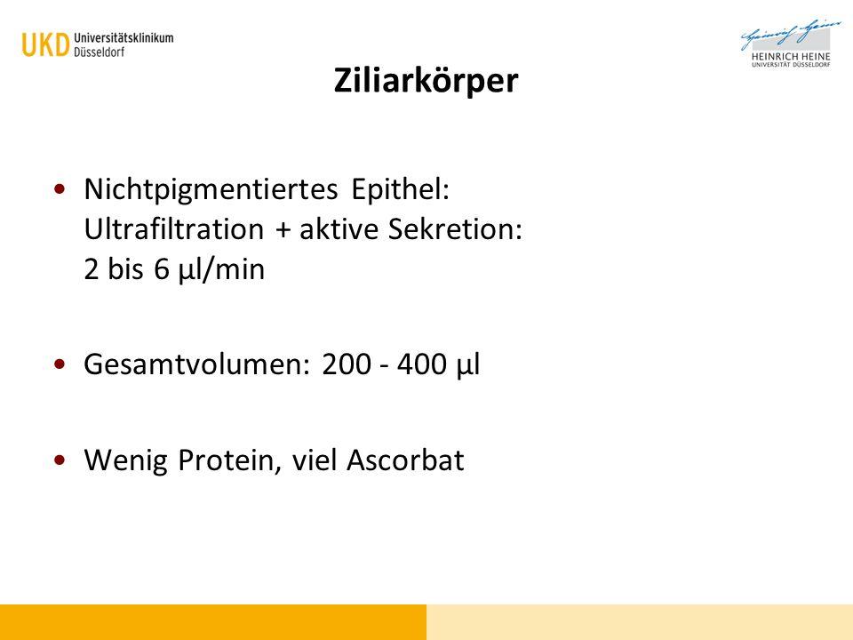 Ziliarkörper Nichtpigmentiertes Epithel: Ultrafiltration + aktive Sekretion: 2 bis 6 µl/min. Gesamtvolumen: 200 - 400 µl.