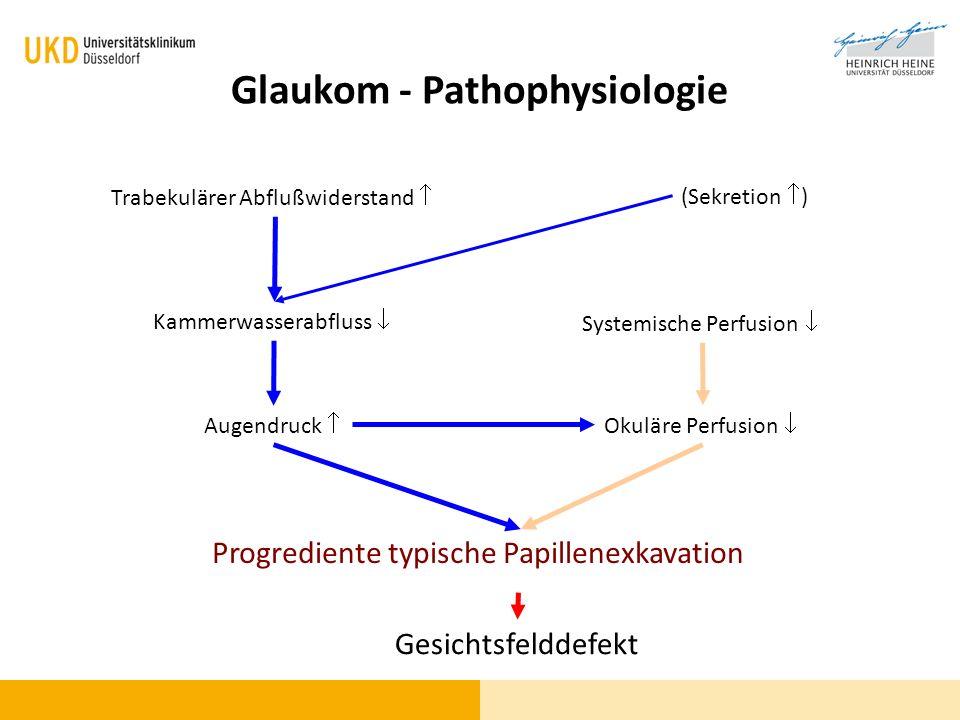 Glaukom - Pathophysiologie