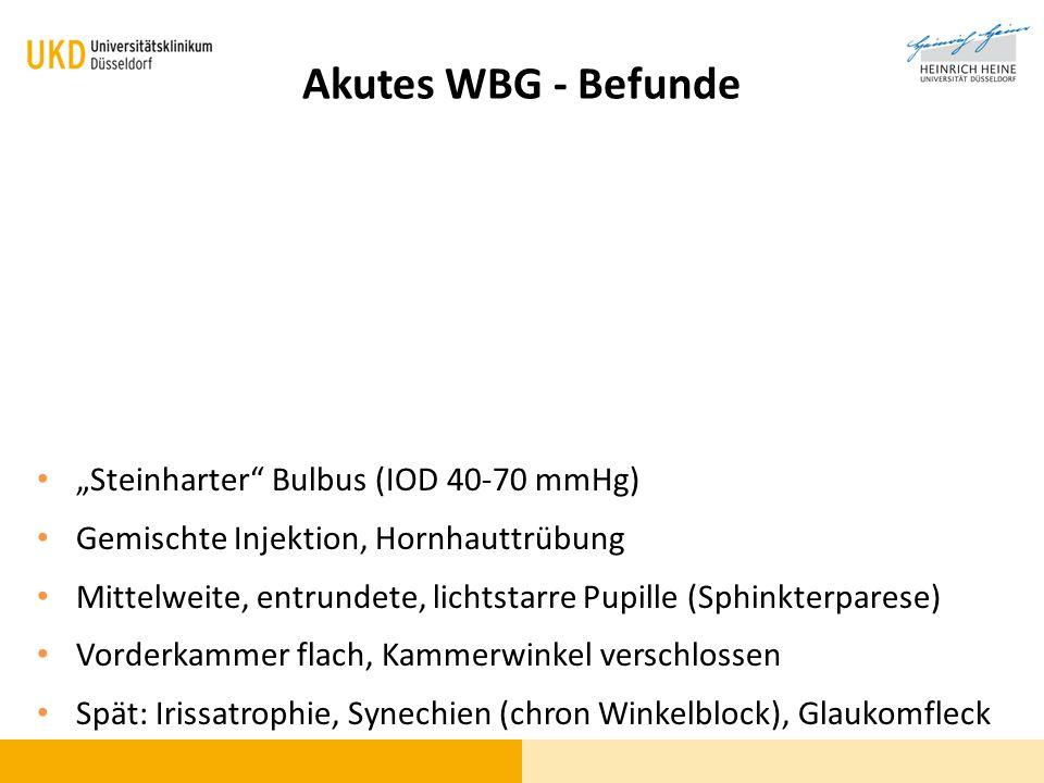 "Akutes WBG - Befunde ""Steinharter Bulbus (IOD 40-70 mmHg)"