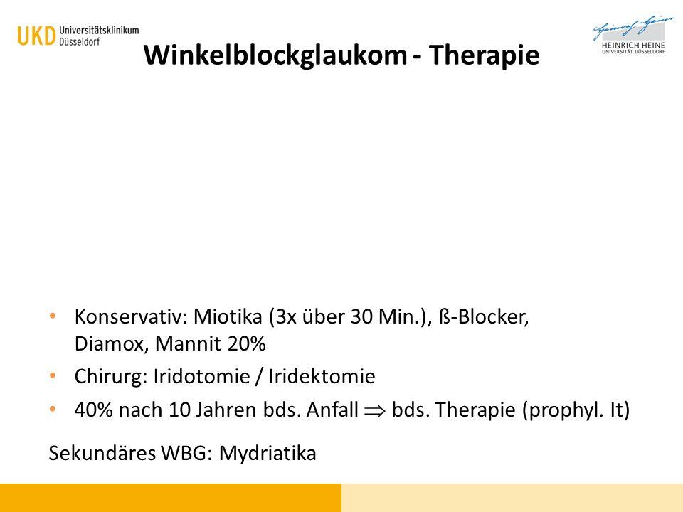 Winkelblockglaukom - Therapie