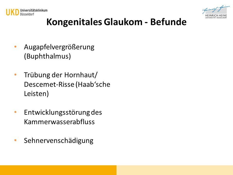 Kongenitales Glaukom - Befunde