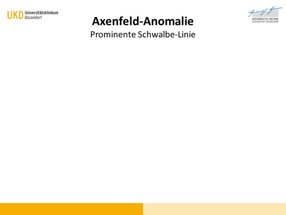 Axenfeld-Anomalie Prominente Schwalbe-Linie