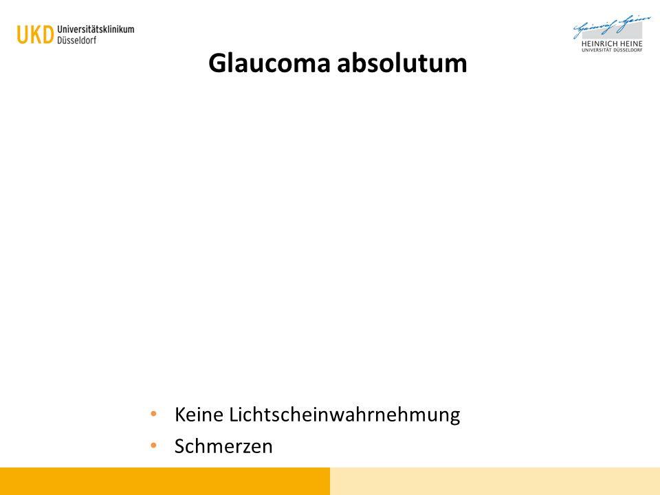 Glaucoma absolutum Keine Lichtscheinwahrnehmung Schmerzen