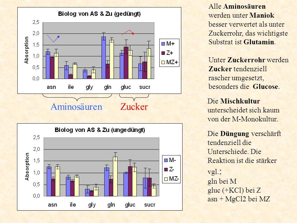 Alle Aminosäuren werden unter Maniok besser verwertet als unter Zuckerrohr, das wichtigste Substrat ist Glutamin.