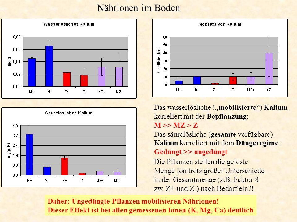 """Nährionen im Boden Das wasserlösliche (""""mobilisierte ) Kalium korreliert mit der Bepflanzung: M >> MZ > Z."""