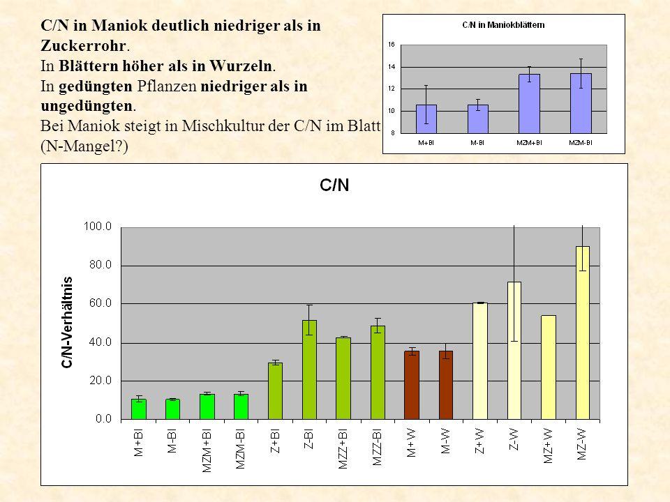 C/N in Maniok deutlich niedriger als in Zuckerrohr.