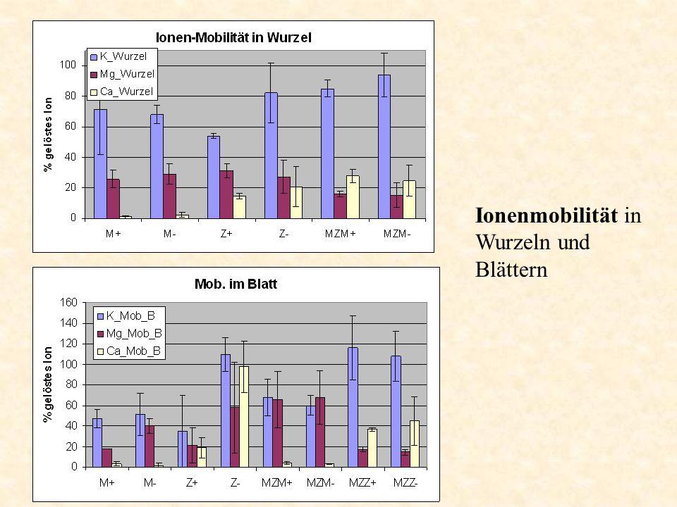 Ionenmobilität in Wurzeln und Blättern
