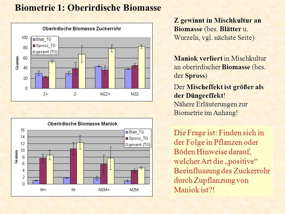 Biometrie 1: Oberirdische Biomasse