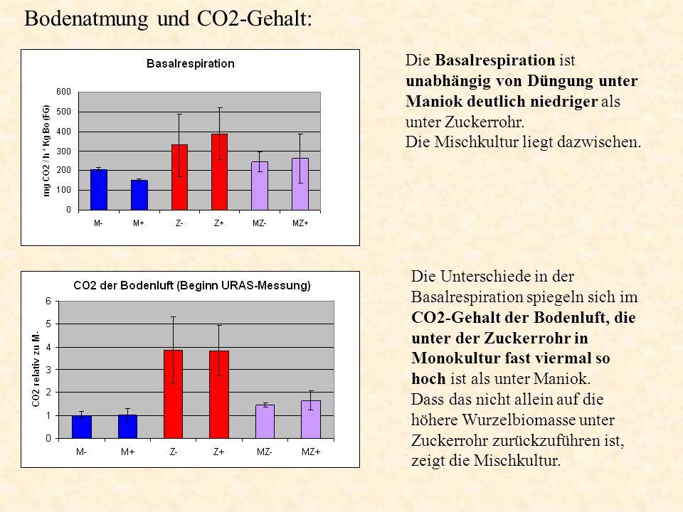 Bodenatmung und CO2-Gehalt: