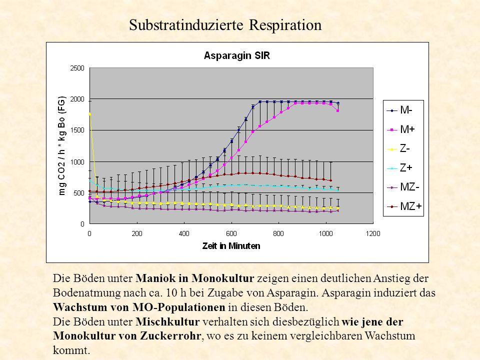 Substratinduzierte Respiration