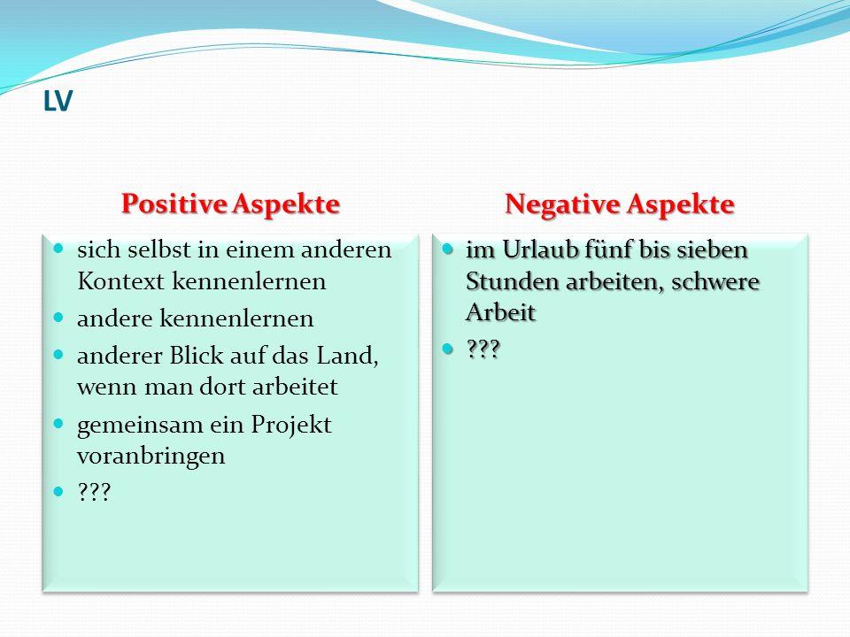 LV Positive Aspekte Negative Aspekte