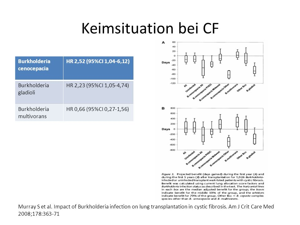 Keimsituation bei CF Burkholderia cenocepacia