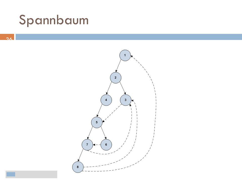 Spannbaum