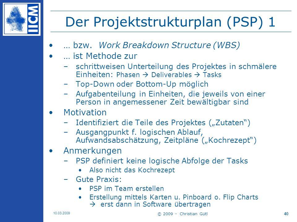 Der Projektstrukturplan (PSP) 1